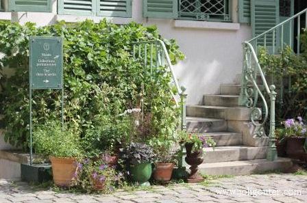 thé dans le jardin